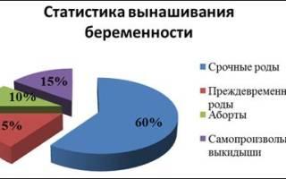 Статистика выкидыши