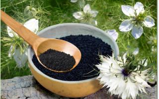 Как вызвать выкидыш черным тмином